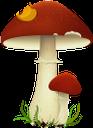 гриб, лесной гриб, красный гриб, грибы, mushroom, wild mushroom, red mushroom, mushrooms, pilz, waldpilz, roter pilz, pilze, champignon, champignon sauvage, champignon rouge, champignons, seta, seta silvestre, seta roja, setas, funghi selvatici, funghi rossi, funghi, cogumelo, cogumelo selvagem, cogumelo vermelho, cogumelos, лісовий гриб, червоний гриб, гриби