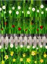трава, забор, ромашка, жук, цветы, божья коровка, нарцисс, газон, зеленая трава, зеленое растение, зеленый, grass, fence, flowers, chamomile, beetle, ladybug, narcissus, green grass, green plant, lawn, green, herbe, clôture, fleurs, camomille, scarabée, coccinelle, narcisse, herbe verte, plante verte, gazon, hierba, manzanilla, escarabajo, mariquita, hierba verde, césped, gras, zaun, blumen, kamille, käfer, marienkäfer, narzisse, grünes gras, grüne pflanze, rasen, grün, erba, recinzione, fiori, camomilla, scarafaggio, coccinella, erba verde, pianta verde, prato, grama, cerca, flores, camomila, besouro, joaninha, narciso, grama verde, planta verde, gramado, verde, паркан, квіти, сонечко, нарцис, зелена трава, зелена рослина, зелений