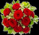флора, цветы, роза, букет роз, flowers, bouquet of roses, blumen, rosen, rosenstrauß, flore, fleurs, roses, bouquet de roses, ramo de rosas, fiori, rose, bouquet di rose, flora, flores, rosas, buquê de rosas