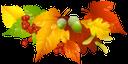 осенние листья, желтый лист, опавший лист, осень, желудь, рябина, гербарий, autumn leaves, yellow leaf, fallen leaf, autumn, acorn, mountain ash, herbstblätter, gelbes blatt, gefallenes blatt, herbst, eichel, eberesche, herbarium, feuilles d'automne, feuille jaune, feuille morte, automne, gland, sorbier, herbier, hojas de otoño, hoja amarilla, hoja caída, otoño, bellota, serbal, el herbario, foglie d'autunno, foglia gialla, foglia caduta, autunno, ghianda, sorbo, erbario, folhas de outono, folha amarela, folha caída, outono, bolota, rowan, herbário