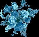 синий цветок, цветы, зеленое растение, флора, blue flower, flowers, green plant, blaue blume, blumen, grüne pflanze, fleur bleue, fleurs, plante verte, flore, fiore blu, fiori, pianta verde, flor azul, flores, planta verde, flora, синя квітка, квіти, зелена рослина