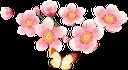 флора, весна, цветы, распустившийся цветок, spring, flowers, blown flower, frühling, blumen, geblasen blume, flore, printemps, fleurs, fleur soufflé, flor abierta, fiori, fiore soffiato, flora, primavera, flores, flor soprado, бабочка