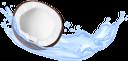 кокос, кокосовый сок, брызги сока, напитки, coconut, coconut juice, splashing juice, drinks, kokosnuss, kokosnusssaft, spritzender saft, getränke, noix de coco, jus de coco, éclaboussures de jus, boissons, jugo de coco, jugo de salpicaduras, cocco, succo di cocco, spruzzi di succo, bevande, coco, suco de coco, suco de salpicos, bebidas, кокосовий сік, бризки соку, напої