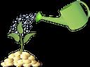золотая монета, деньги, зеленое растение, росток, лейка, gold coin, money, green plant, sprout, watering can, goldmünze, geld, grüne pflanze, sprießen, gießkanne, les pièces d'or, d'argent, plante verte, pousse, arrosoir, moneda de oro, dinero, brote, regadera, moneta d'oro, soldi, pianta verde, germoglio, annaffiatoio, moeda de ouro, dinheiro, planta verde, broto, regador, золота монета, гроші, зелена рослина, паросток, лійка