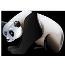 panda, 256