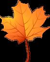 клен, листья клена, желтый лист, осенние листья, осень, осенний лист, листок дерева, листопад, yellow leaf, autumn leaves, autumn, autumn leaf, ahorn, ahornblätter, gelbes blatt, herbstlaub, herbst, herbstblatt, baumblatt, fallende blätter, feuilles d'érable, feuille jaune, feuilles d'automne, automne, feuille d'automne, feuille d'arbre, feuilles tombantes, arce, hojas de arce, hoja amarilla, hojas de otoño, otoño, hoja de otoño, hoja del árbol, hojas que caen, acero, foglie di acero, foglia gialla, foglie di autunno, autunno, foglia di autunno, foglia di albero, foglie che cadono, maple, maple leaves, folhas amarelas, folhas de outono, outono, folha de outono, tree leaf, falling leaves, листя клена, жовтий лист, осіннє листя, осінь, осінній лист
