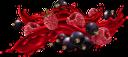 сок, малиновый сок, черная смородина, брызги сока, красный, продукты питания, напитки, juice, raspberry juice, raspberry, black currant, juice splash, red, food, drinks, saft, himbeersaft, himbeere, schwarze johannisbeere, saftspritzer, rot, essen, getränke, jus, jus de framboise, framboise, cassis, éclaboussures de jus, rouge, nourriture, boissons, jugo, jugo de frambuesa, frambuesa, grosella negra, splash de jugo, rojo, comida, succo, succo di lampone, lampone, ribes nero, spruzzata di succo, rosso, cibo, bevande, suco, suco de framboesa, framboesa, groselha preta, respingo de suco, vermelho, alimentos, bebidas, сік, малиновий сік, малина, чорна смородина, бризки соку, червоний, продукти харчування, напої