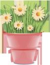 ромашка полевая, цветы, chamomile field, flower pot, flowers, gänseblümchenfeld, blumentopf, blumen, pâquerette, fleurs, campo de la margarita, maceta, margherita di campo, vaso di fiori, fiori, campo da margarida, vaso, flores, ромашка польова, вазон, квіти