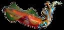 кальмар, squid, tintenfisch, calmar, calamar, calamaro, lula