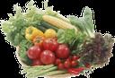 корзина с продуктами, еда, корзина с овощами, овощи, сладкий перец, помидор, цветная капуста, кукуруза, basket with food, food, basket with vegetables, vegetables, sweet pepper, tomato, cauliflower, corn, korb mit essen, essen, korb mit gemüse, gemüse, paprika, tomaten, blumenkohl, panier avec nourriture, nourriture, panier avec légumes, légumes, poivron, chou-fleur, maïs, canasta con comida, canasta con verduras, verduras, pimiento dulce, coliflor, maíz, cestino con cibo, cibo, cestino con verdure, verdure, peperone dolce, pomodoro, cavolfiore, mais, cesto com comida, comida, cesto com legumes, vegetais, pimenta doce, tomate, couve-flor, milho, кошик з продуктами, їжа, кошик з овочами, овочі, солодкий перець, помідор, цвітна капуста, кукурудза