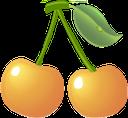 черешня, желтая ягода, ягода черешни, желтый, cherry, yellow berry, cherry berry, yellow, gelbe beere, kirsche, gelb, cerise, baie jaune, baie de cerise, jaune, baya amarilla, cereza, amarillo, bacca gialla, ciliegia, giallo, cereja, amarela, жовта ягода, ягода черешні, жовтий