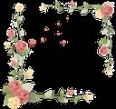 роза, цветочный узор, рамка для фотошопа, цветы, flower pattern, frame for photoshop, flowers, blumenmuster, rahmen für photoshop, blumen, rose, motif floral, cadre pour photoshop, fleurs, estampado de flores, marco para photoshop, motivo floreale, cornice per photoshop, fiori, rosa, teste padrão floral, quadro para photoshop, flores, троянда, квітковий узор, рамка для фотошопу, квіти
