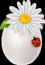 пасха, крашенка, ромашка, божья коровка, куриное яйцо, праздник, пасхальное яйцо, праздничное украшение, easter, daisy, ladybug, chicken egg, holiday, easter egg, festive decoration, ostern, gänseblümchen, marienkäfer, hühnerei, urlaub, osterei, festliche dekoration, pâques, pâquerette, coccinelle, oeuf de poule, vacances, oeuf de pâques, décoration festive, pascua, margarita, mariquita, huevo de gallina, día de fiesta, huevo de pascua, decoración festiva, pasqua, margherita, coccinella, uovo di gallina, vacanza, uovo di pasqua, decorazione festiva, páscoa, krashenka, margarida, joaninha, ovo de galinha, feriado, ovo de páscoa, decoração festiva, паска, писанка, сонечко, куряче яйце, свято, пасхальне яйце, святкова прикраса
