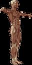 тело человека, человек без кожи, анатомия, мышцы тела, строение тела, медицина, мышечная масса, human body, skinless person, anatomy, body muscles, medicine, body structure, muscle mass, menschlicher körper, hautlose person, körpermuskulatur, medizin, körperstruktur, muskelmasse, corps humain, personne sans peau, anatomie, muscles du corps, médecine, structure du corps, masse musculaire, cuerpo humano, persona sin piel, anatomía, músculos del cuerpo, estructura corporal, masa muscular, corpo umano, persona senza pelle, muscoli del corpo, struttura corporea, massa muscolare, corpo humano, pessoa sem pele, anatomia, músculos do corpo, medicina, estrutura do corpo, massa muscular, тіло людини, людина без шкіри, анатомія, м'язи тіла, будова тіла, м'язова маса