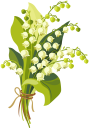 цветы, белый цветок, ландыш, квіти, біла квітка, весна, конвалія, flowers, white flower, spring, lily of the valley, blumen, weiße blumen, frühling, maiglöckchen, fleurs, fleur blanche, le printemps, le muguet, flor blanca, lirio de los valles, fiori, fiore bianco, mughetto, flores, flor branca, primavera, lírio do vale