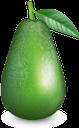 авокадо, плод авокадо, фрукты, зеленый, fruit avocado, green, frucht avocado, obst, grün, avocat, fruit avocat, fruit, vert, aguacate, fruta aguacate, avocado, frutta avocado, frutta, abacate, fruta abacate, fruta, verde, плід авокадо, фрукти, зелений