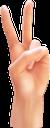 рука, кисть руки, ладонь, жест руки, пальцы руки, часть тела, hand brush, palm, hand gesture, fingers of the hand, part of the body, hand, handpinsel, handfläche, handzeichen, finger der hand, teil des körpers, main, brosse à main, paume, geste de la main, doigts de la main, partie du corps, cepillo de manos, palma, gesto de la mano, dedos de la mano, parte del cuerpo, mano, pennello, palmo, gesto della mano, dita della mano, parte del corpo, mão, escova de mão, palma da mão, gesto de mão, dedos da mão, parte do corpo, долоня, пальці руки, частина тіла