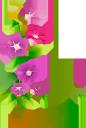 цветы, цветок колокольчик, флористика, флора, flowers, flower bell, floristry, blumen, blumenglocke, floristik, fleurs, fleur cloche, fleuristerie, flore, campana de flores, floristería, fiori, campana di fiori, floristica, flores, sino de flor, produtos de floricultura, flora, квіти, квітка дзвіночок