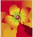 желтый лист, торговые стикеры, осенняя листва, осень, yellow leaf, trade stickers, autumn foliage, autumn, gelbes blatt, kommerzielle aufkleber, herbstlaub, herbst, feuille jaune, autocollants commerciaux, feuillage d'automne, automne, hoja amarilla, pegatinas comerciales, follaje de otoño, otoño, foglia gialla, adesivi commerciali, fogliame autunnale, autunno, folha amarela, adesivos comerciais, outono folha, outono, жовтий лист, торговельні стікери, осіннє листя, осінь