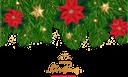 новогоднее украшение, рождественское украшение, красный цветок, звезда, ветка ёлки, рождество, новый год, праздничное украшение, праздник, christmas decoration, red flower, star, christmas tree branch, christmas, new year, holiday decoration, holiday, weihnachtsdekoration, rote blume, stern, weihnachtsbaumast, weihnachten, neues jahr, feiertagsdekoration, feiertag, décoration de noël, fleur rouge, étoile, branche de sapin de noël, noël, nouvel an, décoration de vacances, vacances, flor roja, estrella, rama de árbol de navidad, navidad, año nuevo, decoración navideña, vacaciones, decorazione di natale, fiore rosso, stella, ramo di albero di natale, natale, capodanno, decorazione di festa, vacanza, decoração natal, flor vermelha, estrela, filial árvore, natal, ano novo, decoração, feriado, новорічна прикраса, різдвяна прикраса, червона квітка, зірка, гілка ялинки, різдво, новий рік, святкове прикрашання, свято