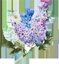 цветы, акварельные цветы, ветка сирени, сирень, флористика, флора, flowers, watercolor flowers, a branch of lilac, lilac, floristics, blumen, aquarellblumen, ein zweig der flieder, flieder, floristik, fleurs, aquarelles fleurs, une branche de lilas, lilas, floristique, flore, flores de acuarela, una rama de lila, lila, flores, flores em aquarela, um ramo de lilás, lilás, florística, flora, квіти, акварельні квіти, гілка бузку, бузок