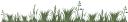 зеленая трава, green grass, grünes gras, herbe verte, hierba verde, erba verde, grama verde, зелена трава