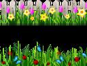трава, забор, цветы, нарцисс, тюльпан, бабочка, божья коровка, зеленая трава, зеленое растение, газон, зеленый, grass, fence, flowers, daffodil, tulip, butterfly, ladybug, green grass, green plant, lawn, green, gras, zaun, blumen, narzisse, tulpe, schmetterling, marienkäfer, grünes gras, grüne pflanze, rasen, grün, herbe, clôture, fleurs, jonquille, tulipe, papillon, coccinelle, herbe verte, plante verte, pelouse, vert, hierba, tulipán, mariposa, mariquita, hierba verde, césped, erba, recinzione, fiori, giunchiglia, tulipano, farfalla, coccinella, erba verde, pianta verde, prato, grama, cerca, flores, narciso, tulipa, borboleta, joaninha, grama verde, planta verde, gramado, verde, паркан, квіти, нарцис, метелик, сонечко, зелена трава, зелена рослина, зелений