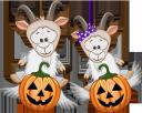 хэллоуин, тыква, козел, праздник, pumpkin, goat, holiday, kürbis, ziege, urlaub, citrouille, chèvre, vacances, calabaza, vacaciones, halloween, zucca, capra, vacanza, dia das bruxas, abóbora, cabra, férias, хеллоуїн, гарбуз, свято