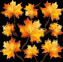 осенняя листва, кленовые листья, желтый лист, осень, листья клена, опавшая листва, осенний лист растения, природа, fall foliage, yellow leaf, autumn, maple leaves, fallen leaves, autumn plant leaf, herbstlaub, gelbes blatt, herbst, ahornblätter, abgefallene blätter, herbstpflanzenblatt, natur, feuillage d'automne, feuille jaune, automne, feuilles d'érable, feuilles tombées, feuille de plante d'automne, nature, follaje de otoño, hoja amarilla, otoño, hojas de arce, hojas caídas, hoja de planta otoñal, naturaleza, fogliame autunnale, foglia gialla, autunno, foglie di acero, foglie cadute, foglia di pianta autunnale, natura, folhagem de outono, folha amarela, outono, folhas de bordo, folhas caídas, folha de planta no outono, natureza, осіннє листя, кленове листя, жовтий лист, осінь, листя клена, опале листя, осінній лист рослини