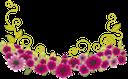 красные цветы, полевые цветы, зеленый лист, red flowers, wildflowers, green leaf, rote blüten, wilde blumen, grünes blatt, fleurs rouges, fleurs sauvages, feuille verte, flores rojas, flores silvestres, hoja verde, fiori rossi, fiori selvatici, verde foglia, flores vermelhas, flores selvagens, folha verde, червоні квіти, польові квіти, зелений лист