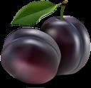 слива, фрукты, синий, plum, blue, pflaume, frucht, blau, prune, fruit, bleu, ciruela, prugna, frutta, blu, ameixa, fruta, azul, фрукти, синій