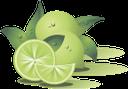 лайм, фрукты, лимон, цитрус, зеленый лимон, цитрусы, зеленый, fruit, lemon, green lemon, citrus, green, limette, frucht, zitrone, grüne zitrone, zitrus, grün, citron vert, fruits, citron, vert citron, agrumes, vert, lima, limón, limón verde, cítricos, lime, frutta, limone, limone verde, agrumi, fruta, limão, citrino, limão verde, cítrico, verde, фрукти, зелений лимон, цитруси, зелени