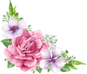 фиолетовый цветок, цветы, зеленое растение, флора, purple flower, flowers, green plant, lila blume, blumen, grüne pflanze, fleur pourpre, fleurs, plante verte, flore, flor morada, fiore viola, fiori, pianta verde, flor roxa, flores, planta verde, flora, фіолетовий квітка, квіти, зелена рослина