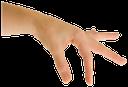 рука, кисть руки, жест, пальцы, часть тела, ладонь, открытая ладонь, пальцы руки, указательный палец, ладонь вниз, размер
