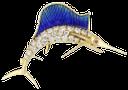ювелирное украшение, золотая рыбка, золото, золотое украшение, драгоценные камни, алмаз, голубой марлин, золотой марлин, jewelry, goldfish, gold jewelry, gems, diamonds, blue marlin, marlin gold, schmuck, goldfisch, gold, goldschmuck, edelsteine, diamanten, blaue marline, speer gold, bijoux, poisson rouge, or, bijoux en or, des pierres précieuses, diamants, marlin bleu, marlin or, joyería, peces de colores, joyas de oro, joyas, marlín azul, marlín oro, gioielli, pesci rossi, oro, gioielli in oro, gemme, diamanti, marlin blu, marlin oro, jóias, peixe dourado, ouro, jóias de ouro, pedras preciosas, diamantes, espadim azul, ouro marlin
