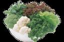 капуста брокколи, листья салата, петрушка, cabbage broccoli, lettuce, parsley, brokkoli, salat, petersilie, brocoli, la laitue, le persil, brócoli, lechuga, perejil, broccoli, lattuga, prezzemolo, brócolis, alface, salsa