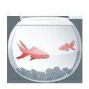 aqua, fish, fishes, pisces, рыба, рыбы, аквариумные рыбки