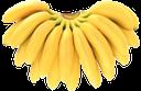 банан, связка бананов, тропический плод, a bunch of bananas, a tropical fruit, bananen bündel, tropische früchte, banane, bananes bouquet, de fruits tropicaux, plátano, plátanos manojo, banane mazzo, frutta tropicale, banana, bananas grupo, fruta tropical