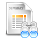 summary search 128