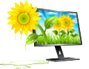 экология, зеленое растение, подсолнух, монитор компьютера, ecología, girasol, monitor de la computadora, ecologia, planta verde, girassol, monitor de computador, l'écologie, la plante verte, tournesol, moniteur d'ordinateur, ökologie, grüne pflanze, sonnenblume, computer-monitor, ecology, green plant, sunflower, computer monitor, лист