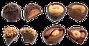 шоколад, шоколадные конфеты с начинкой, шоколадное ассорти, chocolate candy with fillings, chocolate platter, schokolade, schokolade und bonbons mit füllungen, schokolade platter, chocolat, bonbons au chocolat avec des remplissages, chocolat plateau, caramelo de chocolate con rellenos, plato de chocolate, cioccolato, caramelle al cioccolato con ripieni, piatto cioccolato, chocolate, doces de chocolate com recheio, prato de chocolate