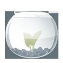 fish, aqua, водоросль, aquarium, аквариум, water plant, seaweed, alga, seaware