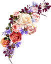 красная роза, белая роза, желтая роза, цветок розы, бутон розы, цветы, роза, зеленое растение, red rose, white rose, yellow rose, rose flower, flowers, green plant, rote rose, weiße rose, gelbe rose, rose blume, rosebud, blumen, grüne pflanze, rose rouge, rose blanche, rose jaune, fleur rose, bouton de rose, fleurs, flore, rose, plante verte, rosa roja, rosa blanca, rosa amarilla, rosa flor, capullo de rosa, rosa rossa, rosa bianca, rosa gialla, fiore rosa, bocciolo di rosa, fiori, pianta verde, rosa vermelha, rosa branca, rosa amarela, flor rosa, flores, flora, rosa, planta verde, червона троянда, біла троянда, жовта троянда, квітка троянди, бутон троянди, квіти, флора, троянда, зелена рослина