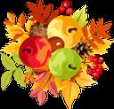 осенняя листва, красный лист, яблоки, гроздь рябины, яблоко, желтый лист, осень, опавшая листва, осенний лист растения, autumn foliage, red leaf, apples, rowan bunch, apple, yellow leaf, autumn, fallen leaves, autumn plant leaf, herbstlaub, rotes blatt, äpfel, ebereschenbündel, apfel, gelbes blatt, herbst, laub, herbstpflanzenblatt, natur, feuillage d'automne, feuille rouge, pommes, bouquet de sorbier, pomme, feuille jaune, automne, feuilles tombées, feuille de plante d'automne, nature, follaje de otoño, hoja roja, manzanas, manojo de serbal, manzana, hoja amarilla, otoño, hojas caídas, hoja de planta otoñal, naturaleza, fogliame autunnale, foglia rossa, mele, mazzo di sorbo, mela, foglia gialla, autunno, foglie cadute, foglia di pianta autunnale, natura, folhagem de outono, folha vermelha, maçãs, cacho de rowan, maçã, folha amarela, outono, folhas caídas, folha de planta de outono, natureza, осіннє листя, червоний лист, яблука, гроно горобини, яблуко, жовтий лист, осінь, опале листя, осінній лист рослини, природа