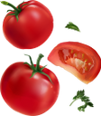 помидор, томаты, красный помидор, овощи, продукты питания, зеленое растение, еда, красный, tomato, tomatoes, red tomato, vegetables, green plant, food, red, tomaten, rote tomate, gemüse, grüne pflanze, lebensmittel, rot, tomate rouge, légumes, plante verte, nourriture, rouge, tomates, tomate rojo, verduras, rojo, pomodoro, pomodori, pomodoro rosso, verdure, pianta verde, cibo, rosso, tomate, tomate vermelho, vegetais, planta verde, comida, vermelho, помідор, томати, червоний помідор, овочі, продукти харчування, зелена рослина, їжа, червоний