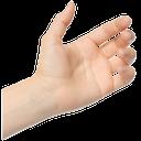 рука, кисть руки, жест, пальцы, часть тела, ладонь, открытая ладонь, приветствие