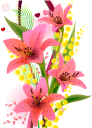 цветы, цветочная композиция, мимоза, красный цветок, флора, flowers, flower arrangement, red flower, blumen, blumenarrangement, mimose, rote blume, fleurs, composition florale, fleur rouge, flore, arreglo floral, flor roja, fiori, composizione floreale, fiore rosso, flores, arranjo de flores, mimosa, flor vermelha, flora, квіти, квіткова композиція, мімоза, червона квітка