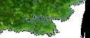 зеленое дерево, ветка дерева, зеленый лист, green tree, tree branch, green leaf, grünen baum, baum-zweig, grünen blatt, arbre vert, branche d'arbre, feuille verte, árbol verde, rama de árbol, hoja verde, albero verde, ramo di un albero, foglia verde, árvore verde, ramo de árvore, folha verde