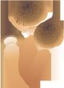 грибы, лесные грибы, mushrooms, forest mushrooms, pilze, waldpilze, champignons, champignons forestiers, setas, setas del bosque, funghi, funghi della foresta, cogumelos, cogumelos da floresta, гриби, лісові гриби