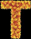 буквы из листьев, буква t, осенняя листва, желтые листья, английский алфавит, letters from leaves, letter t, autumn foliage, yellow leaves, english alphabet, briefe aus den blättern, buchstaben t, blätter im herbst, gelbe blätter, das englische alphabet, lettres des feuilles, lettre t, feuilles d'automne, les feuilles jaunes, l'alphabet anglais, cartas de las hojas, hojas de otoño, las hojas amarillas, el alfabeto inglés, lettere dalle foglie, lettera t, foglie di autunno, foglie gialle, l'alfabeto inglese, letras das folhas, letra t, folhas de outono, as folhas amarelas, o alfabeto inglês, букви з листя, літера t, осіннє листя, жовте листя, англійський алфавіт